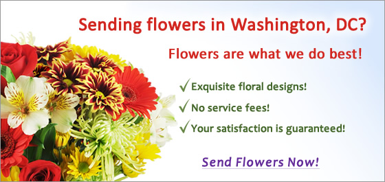 Flower Delivery in Washington DC image