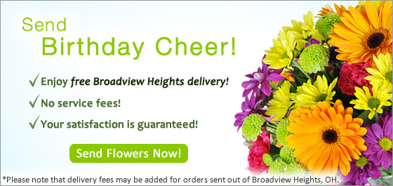 Send Flowers Broadview Heights OH Florist