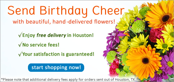 Send Flowers Houston TX Florist